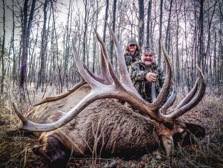 Trophy Elk 1