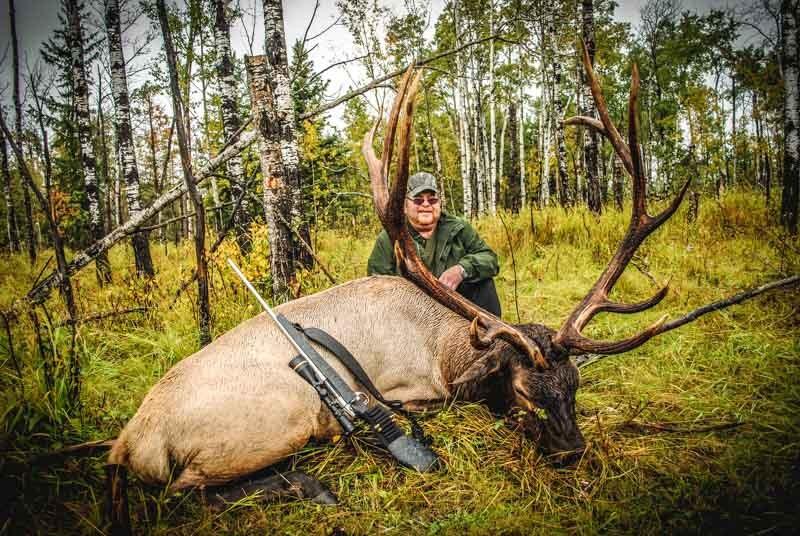 Trophy Elk 3